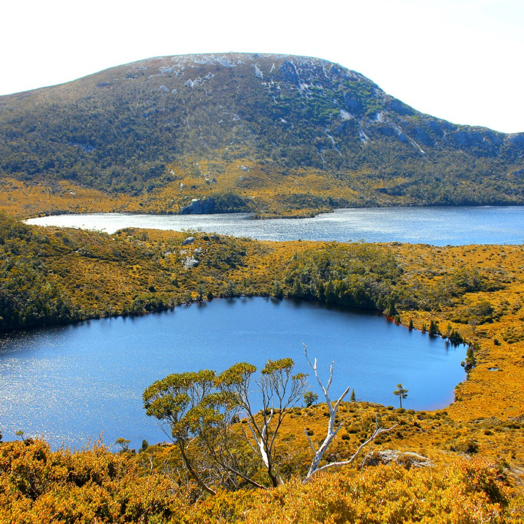 how to get to the cradle mountain boat shed walk