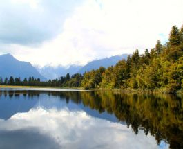 Treks: Lake Matheson Circuit, Fox Glacier