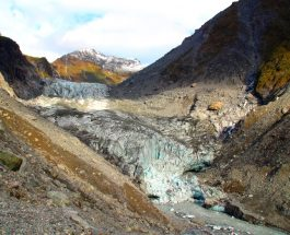 Treks: Fox Glacier Valley Walk, Fox Glacier