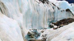 Sights & Sounds: Flying Fox Helihike, Fox Glacier