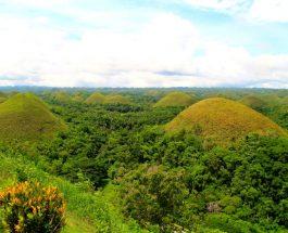 Sights & Sounds: 3D2N on the Island, Bohol