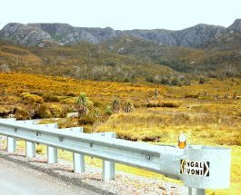 Treks: Lake St Clair National Park, Cradle Mountain
