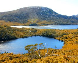 Treks: Marions Lookout, Cradle Mountain